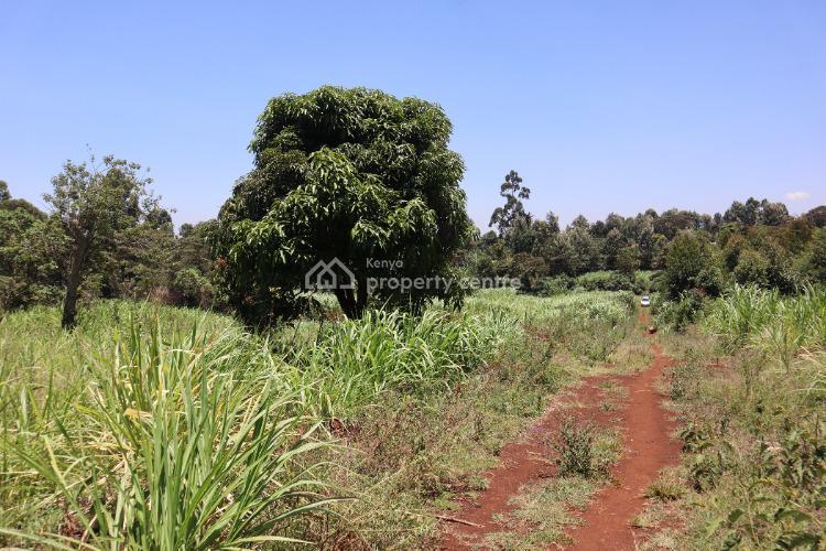 Prime Land for Development in Ruaka Kiambaa, Ndenderu Banana Link Road, Ndenderu, Kiambu, Residential Land for Sale