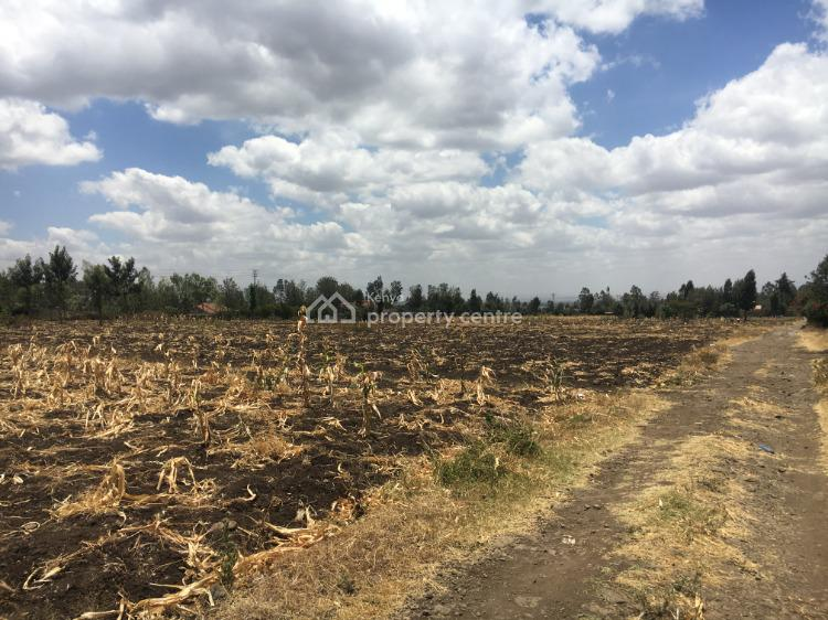 50 X 100 Plot of Land, Nkoroi, Ongata Rongai, Kajiado, Land for Sale