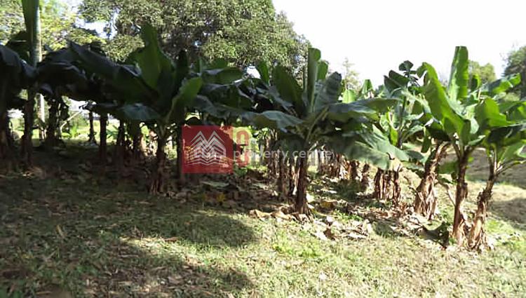 8 Acres Farmland, Msambweni, Chengoni/samburu, Kwale, Land for Sale