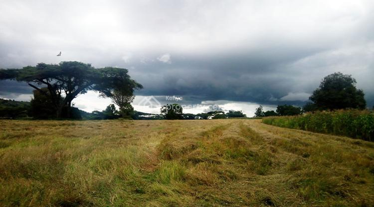 Marmanet Farm, Marmanet, Laikipia, Land for Sale