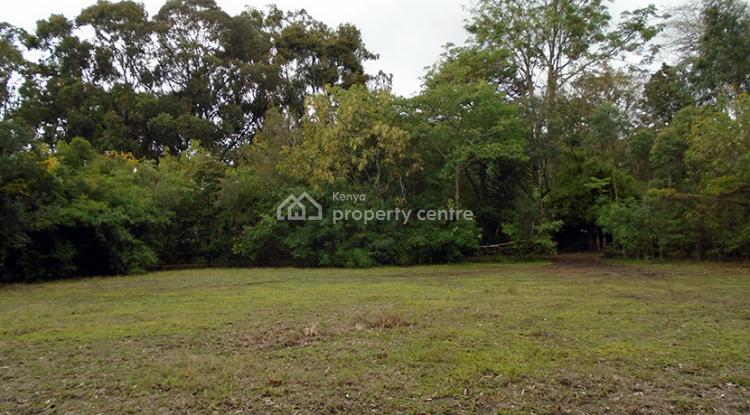 Karen Vacant Plot, Karen, Nairobi, Land for Sale