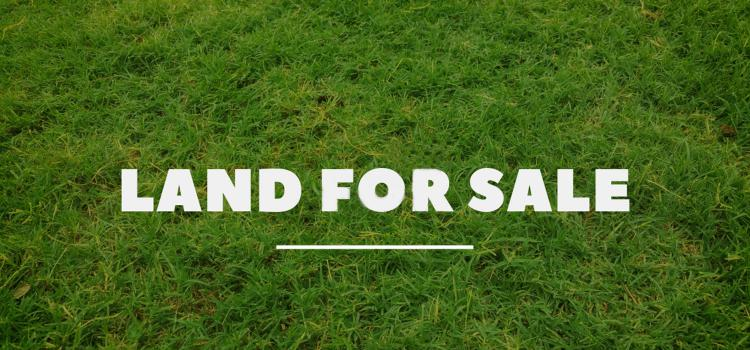 22.5 Acres of Land, Kisaju | Olooloitikosh, Kitengela, Kajiado, Land for Sale