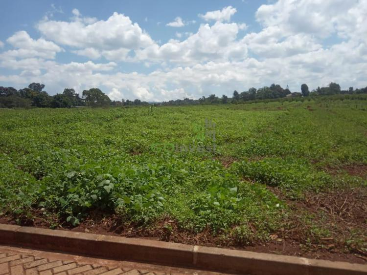 0.5 Acre Plots, Kirawa Road, Kitisuru, Nairobi, Land for Sale