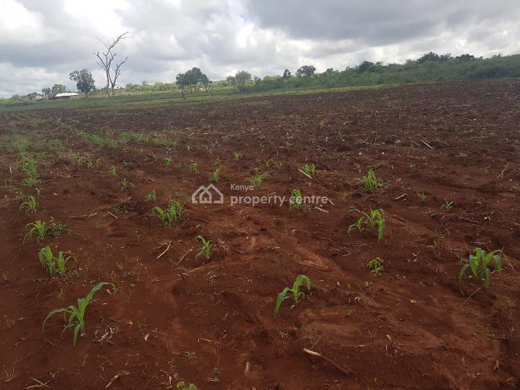 Affordable Prime Plots, Malindi Town, Kilifi, Mixed-use Land for Sale