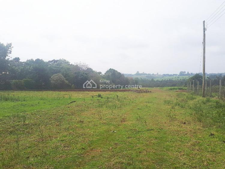 Tigoni Prime Plots 1/2 Acres, Tigoni Hoospital Road, Ngecha Tigoni, Kiambu, Mixed-use Land for Sale