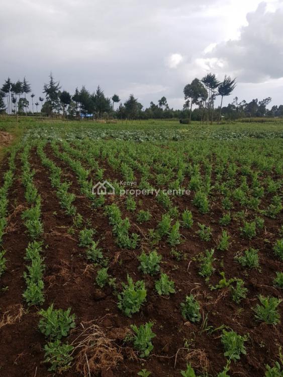 1 Acre Mwendandu, Mwendandu, Magumu, Nyandarua, Mixed-use Land for Sale