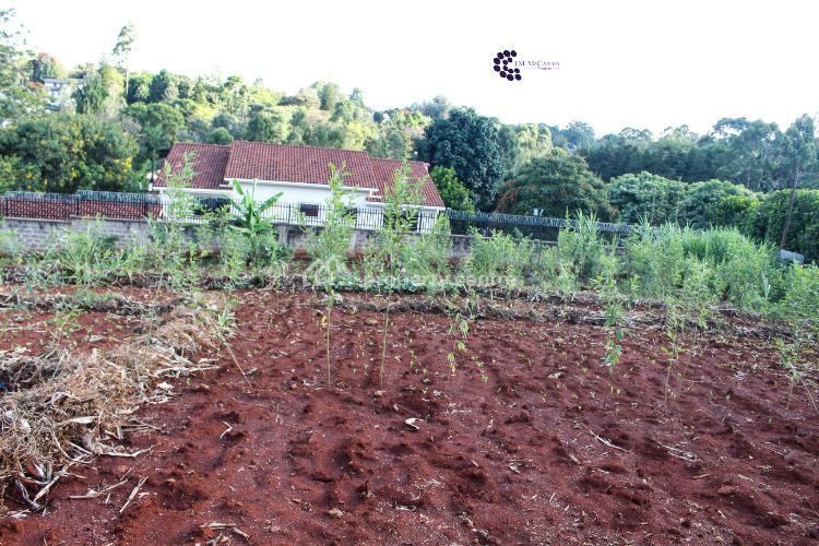 Thigiri Ridge 0.5-acre Prime Plot, Thigiri Ridge, Kitisuru, Nairobi, Residential Land for Sale