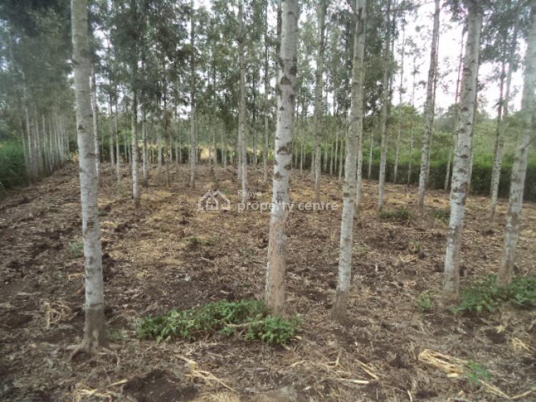 Prime 1/4 Acre Plot, Kiserian, Ongata Rongai, Kajiado, Residential Land for Sale