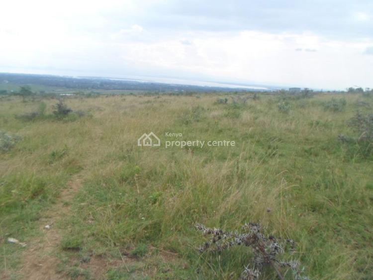 1/4 an Acre with a Panoramic View of Lake Naivasha, Mai-mahiu Road, Naivasha East, Nakuru, Land for Sale