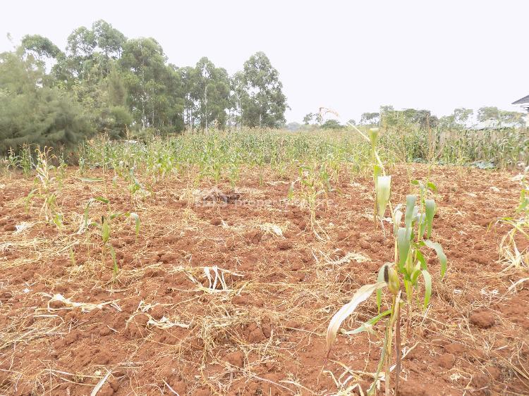 Ruiru Daykio Bustani 1/4 Acre Plot, Ruiru Kiganjo Road, Ruiru, Kiambu, Residential Land for Sale
