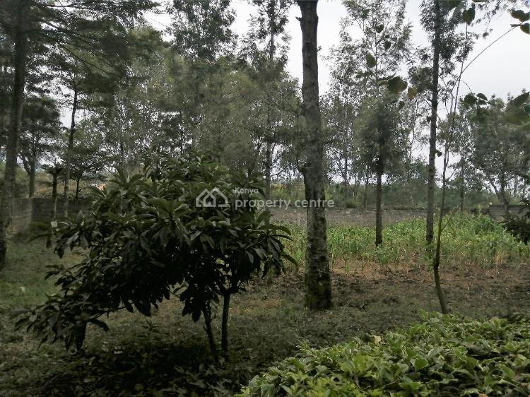 Four Bedrooms Bungalow  in Ololua Ngong, Oloolua, Ngong, Kajiado, Detached Bungalow for Rent
