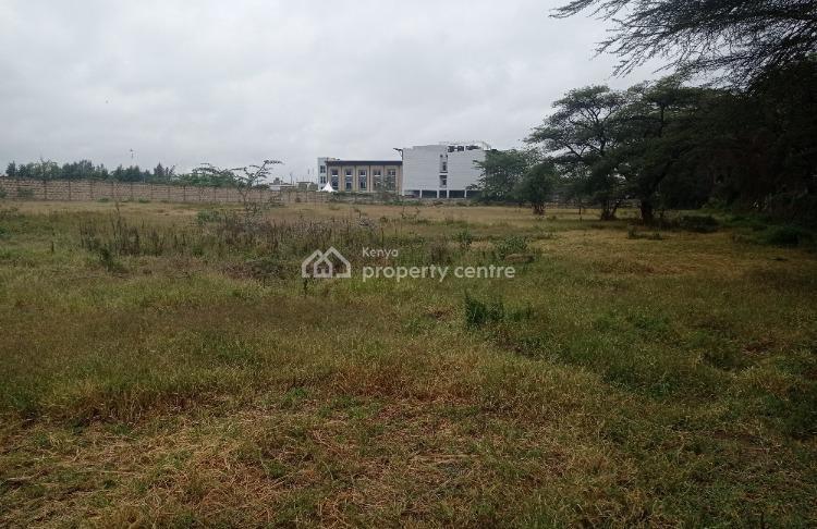 Very Prime Residential Plots, Moi South Lake Road, Naivasha East, Nakuru, Residential Land for Sale