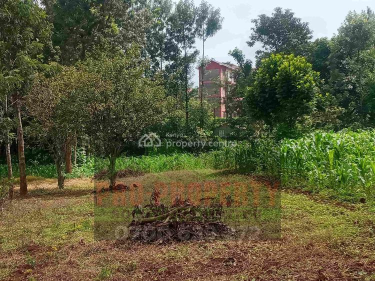 100 By 100ft Plot, Muthiga, Kikuyu, Kiambu, Commercial Land for Sale