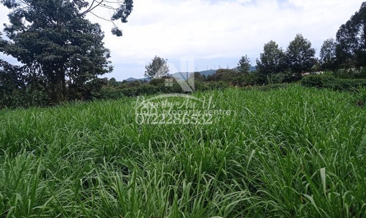 Prime Quarter Acre Plot, Olteyani, Ngong, Ngong, Kajiado, Residential Land for Sale