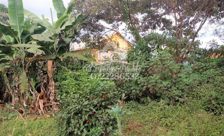 Shopping Center Commercial Plot, Dogoretti Shopping Center, Kikuyu, Kiambu, Commercial Land for Sale