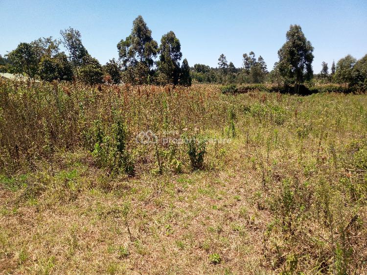 Half Acre Plot in Serene Location, Kikuyu Ondiri Road, Kikuyu, Kiambu, Residential Land for Sale
