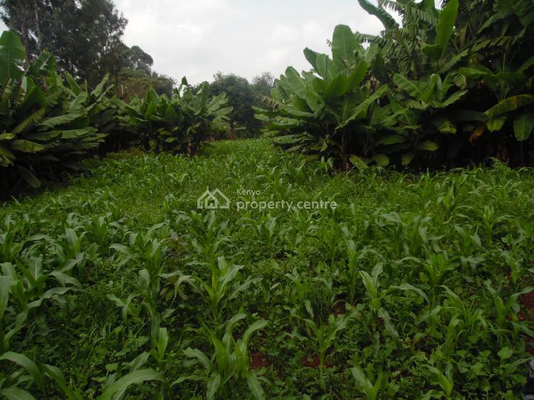 Lovely Land,red Soil!, Kibiko, Ngong, Kajiado, Land for Sale