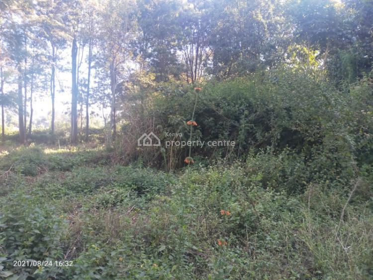 100 By 100 Plots.it Is Accessible to Tarmac., Kikuyu, Kikuyu, Kiambu, Land for Sale