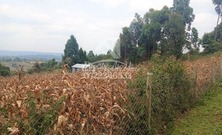 Quarter Acre Residential Plot, Kamangu, Kikuyu, Kiambu, Residential Land for Sale