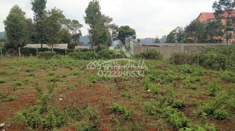 Prime Commercial Plot, Limuru Central, Kiambu, Residential Land for Sale