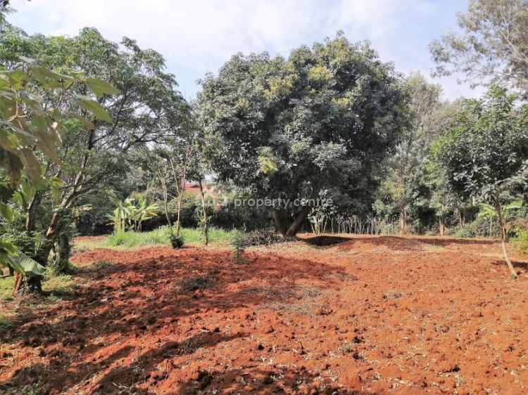Half Acre Land, Kuwinda Road, Karen, Nairobi, Mixed-use Land for Sale