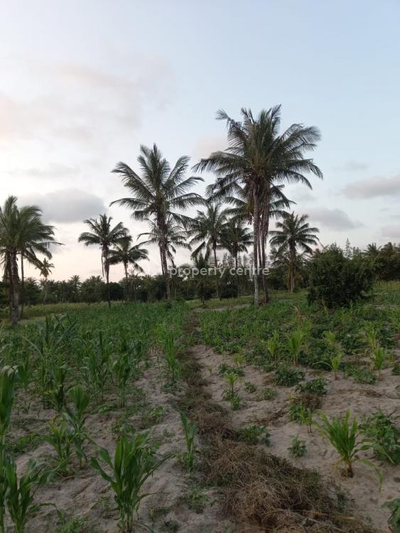 12 Acres Agricultural Land, Kikambala, Bamba, Kilifi, Mixed-use Land for Sale
