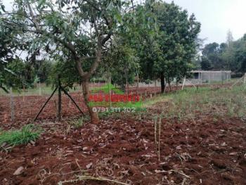 Prime 0.05 Ha Residential Plot in Kikuyu, Gikambura., Gikambura, Kikuyu, Kiambu, Residential Land for Sale