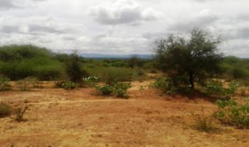 150 Acres of Prime Land, Namanga- Amboseli Road, Majengo, Mombasa, Mixed-use Land for Sale