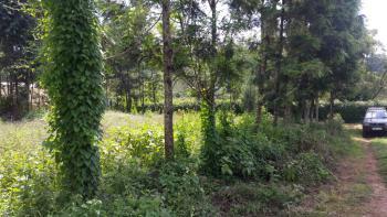 2 Plots of Land, Ondiri, Kikuyu, Kiambu, Residential Land for Sale