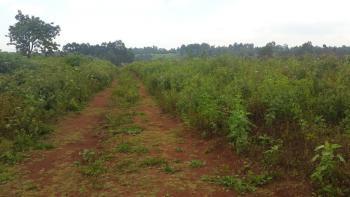 1/4 Acre Plot, Gikambura, Kikuyu, Kiambu, Residential Land for Sale