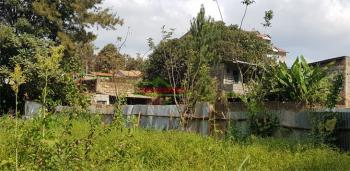 1/8 Acre Plot, Muthiga, Kinoo, Kiambu, Land for Sale