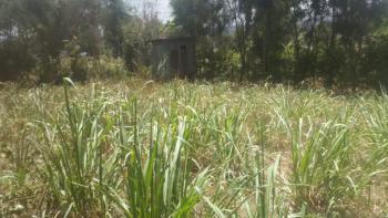 1/8 Acre Plot, Thamanda, Muguga, Kiambu, Land for Sale