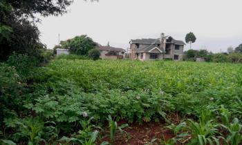 Prime Plot, Gikambura, Kikumbulyu North, Makueni, Land for Sale