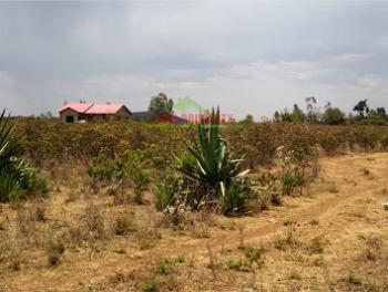 2 Plots of Land, Naivasha, Gilgil, Nakuru, Land for Sale