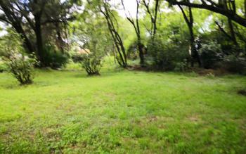 Prime Land in Milimani Estate, London, Nakuru, Detached Bungalow for Sale