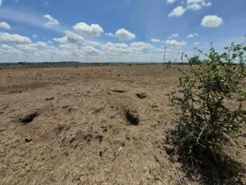 a 2 Acres Land, Olooloitikosh (birika), Isinya Town , Rift Valley, Nakuru East, Nakuru, Land for Sale