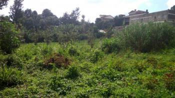 0.6 Acres Plot, Gitaru Road, Githurai, Nairobi, Land for Sale