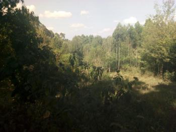 0.5 Acre Plot, Waiyaki Way, Kikuyu, Central, Sigona, Kiambu, Land for Sale