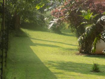 0.8 Acres Vacant Land, Lavington, Nairobi, Mixed-use Land for Sale