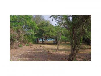 Fully Serviced Quarter Acre Beachfront Plots, Diani, Ukunda, Kwale, Land for Sale
