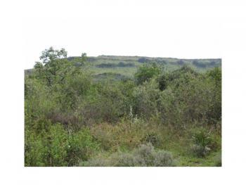 Picturesque 6.44acre Residential Plot, Ridgemount Estate, Gilgil, Nakuru, Land for Sale