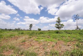0.5 Acres Vacant Land, Bibirioni, Kiambu, Land for Sale