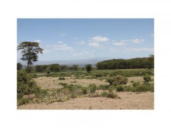 3 Lake Plots of 5 Acres Each Near Sopa Lodge, on Moi South Road, Naivasha East, Nakuru, Land for Sale