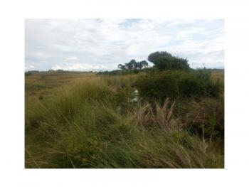 5 Acres of Arable Land Ideal for Farming, Near Chaka, Naromoru Kiamathaga, Nyeri, Land for Sale