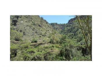 Serene, Attractive 20.4 Acre Farmland with Seasonal River Frontage, Gilgil, Nakuru, Land for Sale