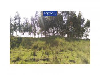 15.5 Acre Farm, Ol Kalou, Gilgil, Nakuru, Land for Sale