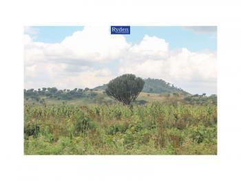 Level 5 Acre Agricultural Land, Near Moi Dabi., Naivasha East, Nakuru, Land for Sale