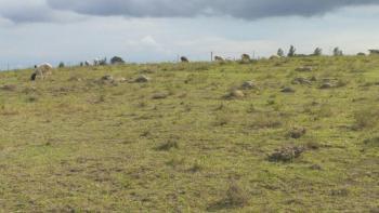 10 Acres, Kiserian, Kiserian , Rift Valley, Kisanana, Baringo, Land for Sale