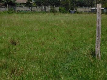 1 Acres Residential Vacant Land, Karen, Nairobi, Residential Land for Sale