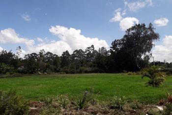 1.25 Acres Residential Vacant Land, Karen, Nairobi, Residential Land for Sale